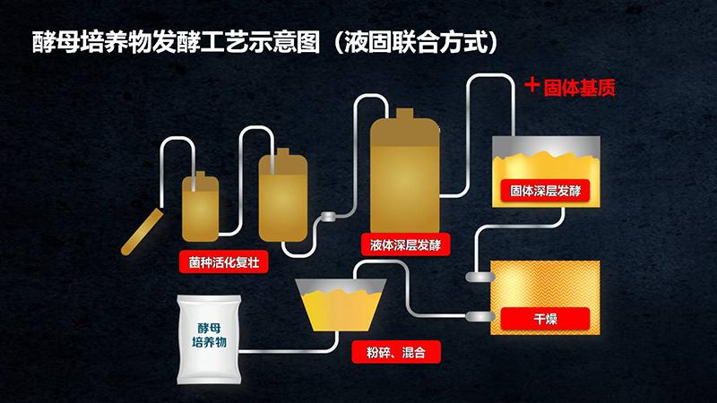 2019成都-畜牧业协会(初稿�?x.jpg